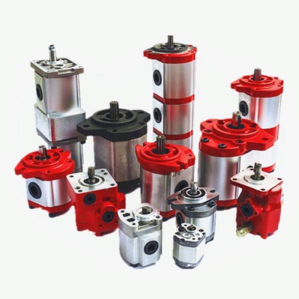 Vane Pump R901089061 PVV52-1X/154-055RA15UUMC Vane Pump #1 image
