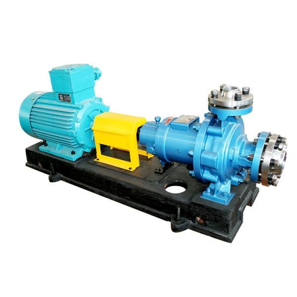 Vane Pump R961002460 WELLE PVV/PVQ51-1X/J+LAGER Vane Pump #1 image