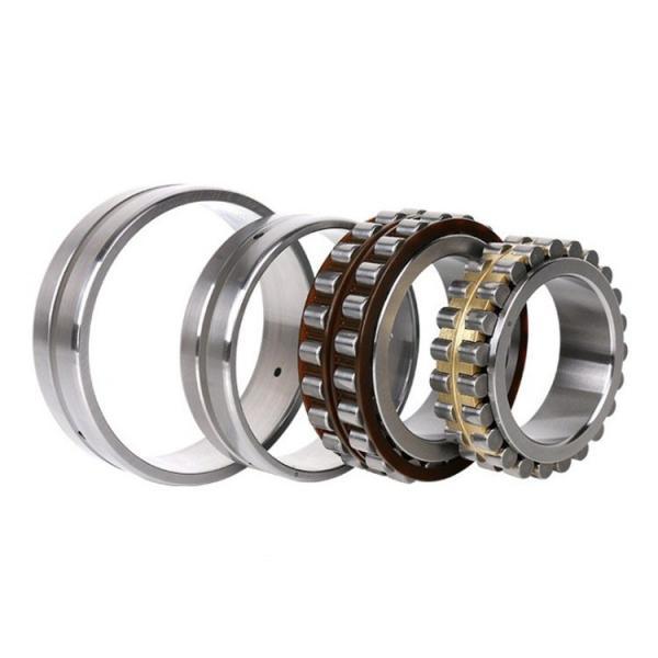 FAG NU319-E-TVP2-C3  Cylindrical Roller Bearings #1 image