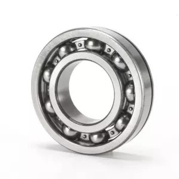 FAG NU319-E-TVP2-C3  Cylindrical Roller Bearings #2 image